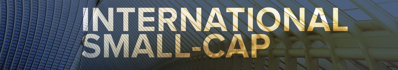 International Small-Cap